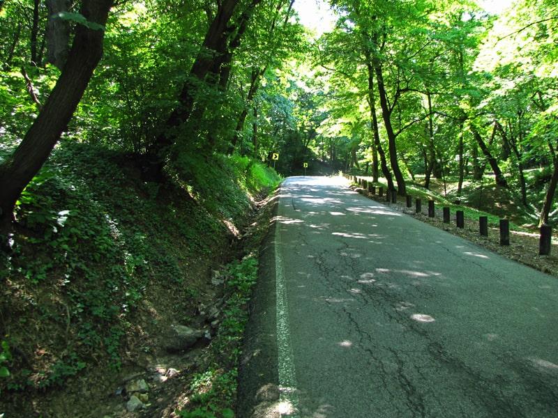 Asfaltni put od Hajdučke česme