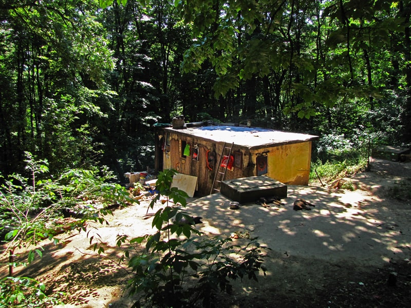 Kućica u košutnjačkoj šumi