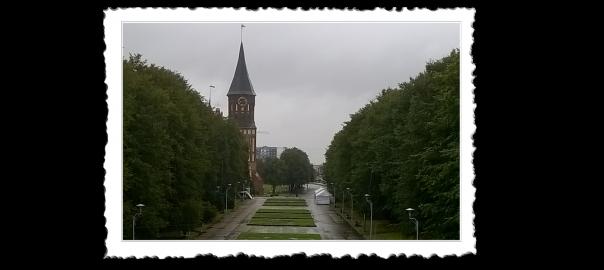 Kišoviti Kalinjingrad